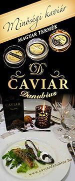 caviardanubius.hu